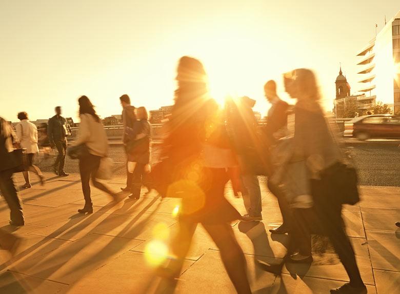 champs d'intervention fors recherche sociale